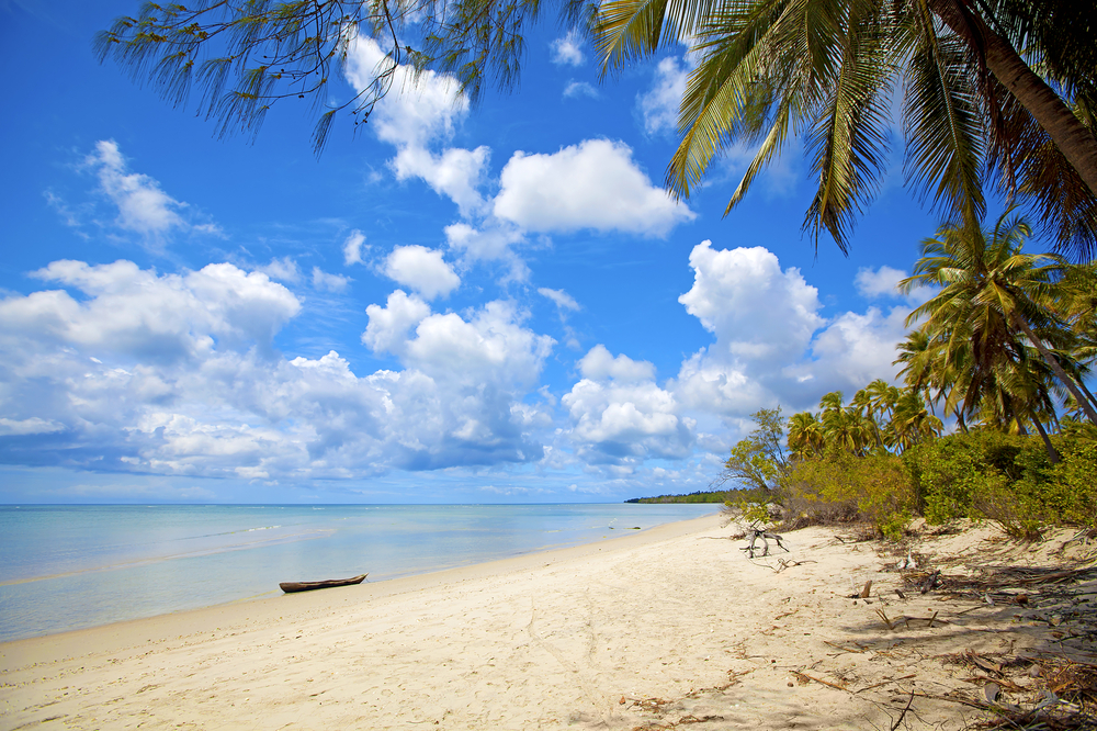 Untouched nature at Mafia Island in Tanzania