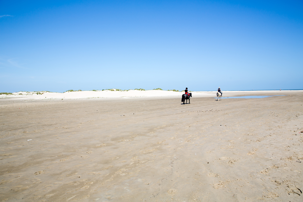 two rider riding along the coast of the German Sea (Norderney/Germany)