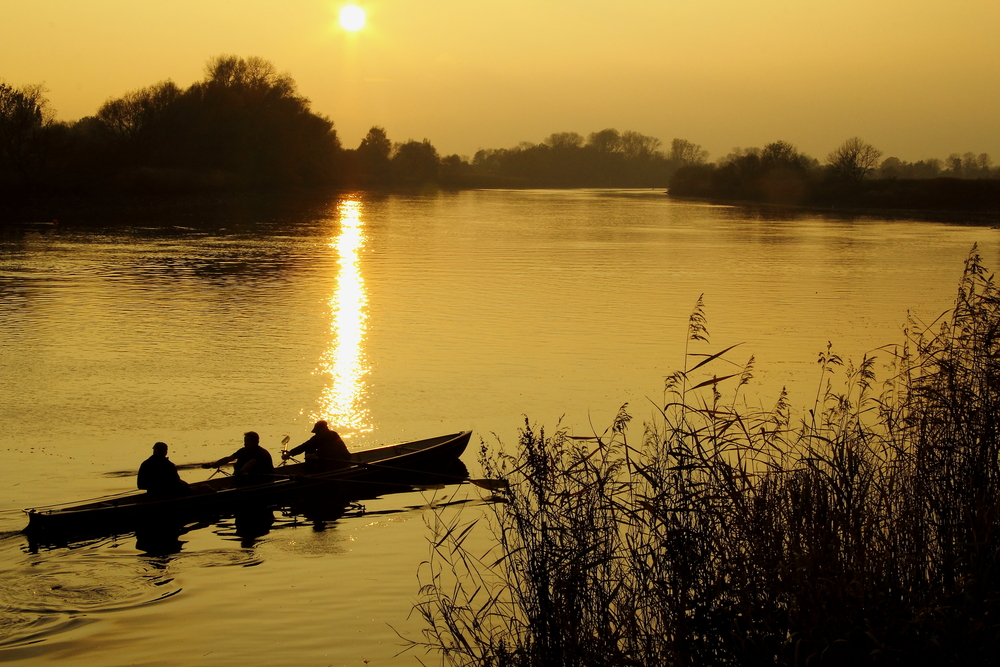 Silhouettes of a rower boat on the river is swimming into the golden sunlight, Knoops Park, Bremen, Germany