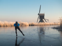 Person ice skating alone on a frozen river past a windmill and hoar frosted reeds in Kinderdijk in winter in the Netherlands.