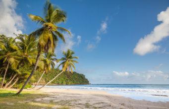 The Stunning Beach Of La Sagesse On The Island Of Grenada