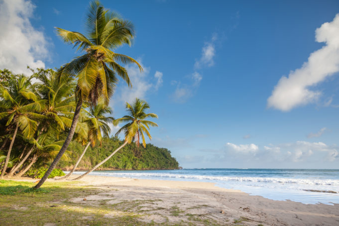 The Stunning Beach Of La Sagesse On The Island Of Grenada